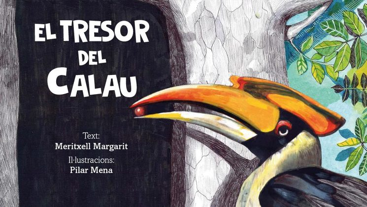 El calau bicorne, el protagonista principal del conte, il·lustrat per la Pilar Mena