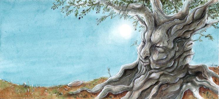 Il·lustració Sonia Coloma