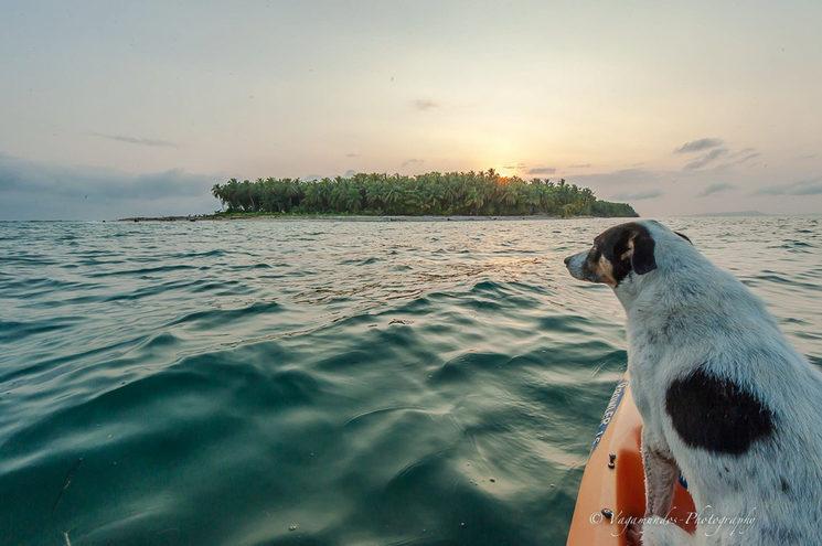 Aventura caribeña