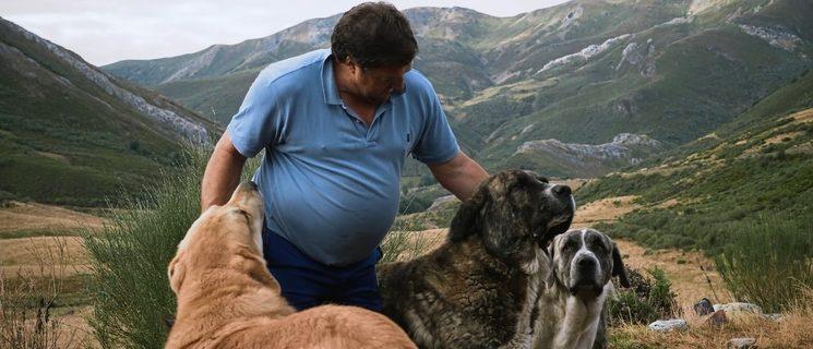 Jose Ángel Escalona, uno de los últimos pastores trahumantes de la cordillera Cantábrica (Valle de Lobos, León)