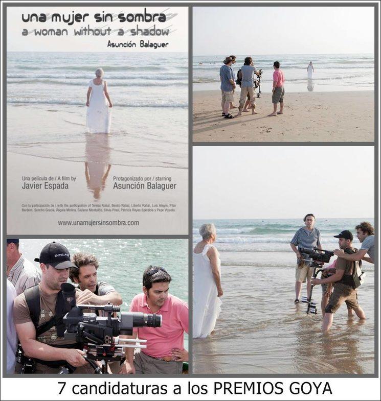 seven nominations for the Goya awards.