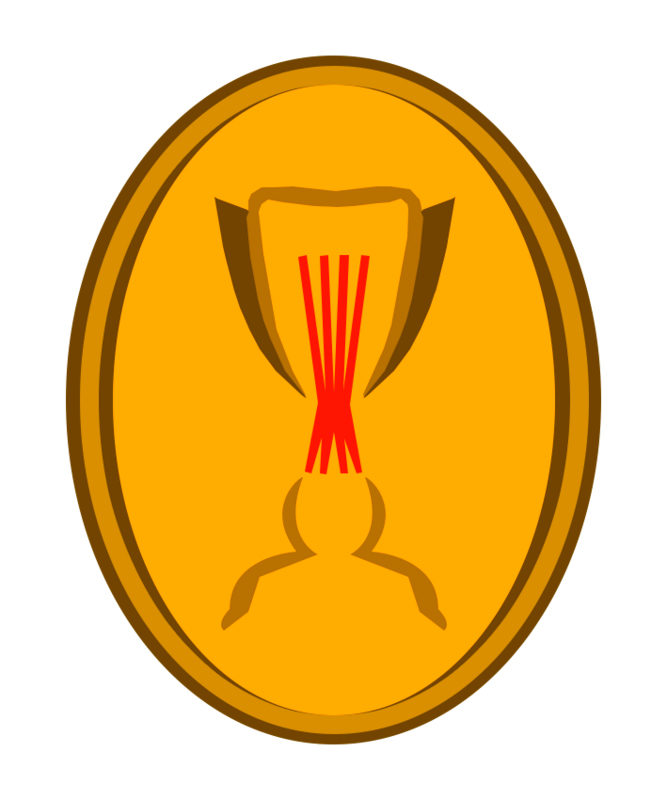 Emblema de la Copa de Catalunya, present a una màniga