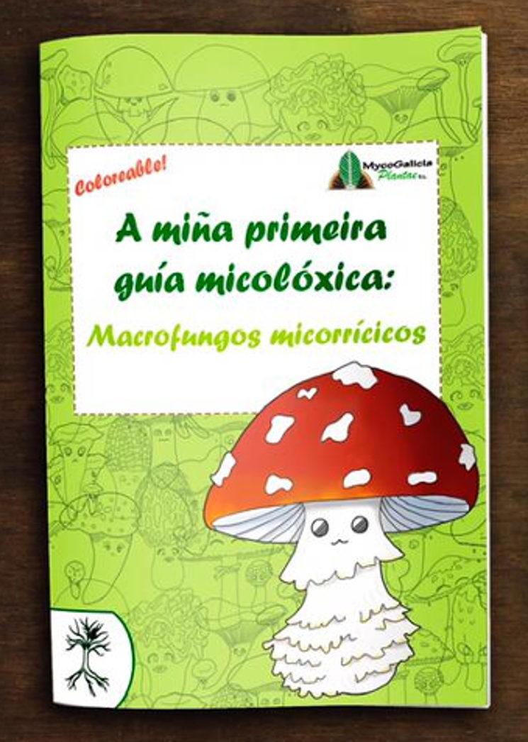 A miña primeira guía micolóxica: macrofungos micorricicos