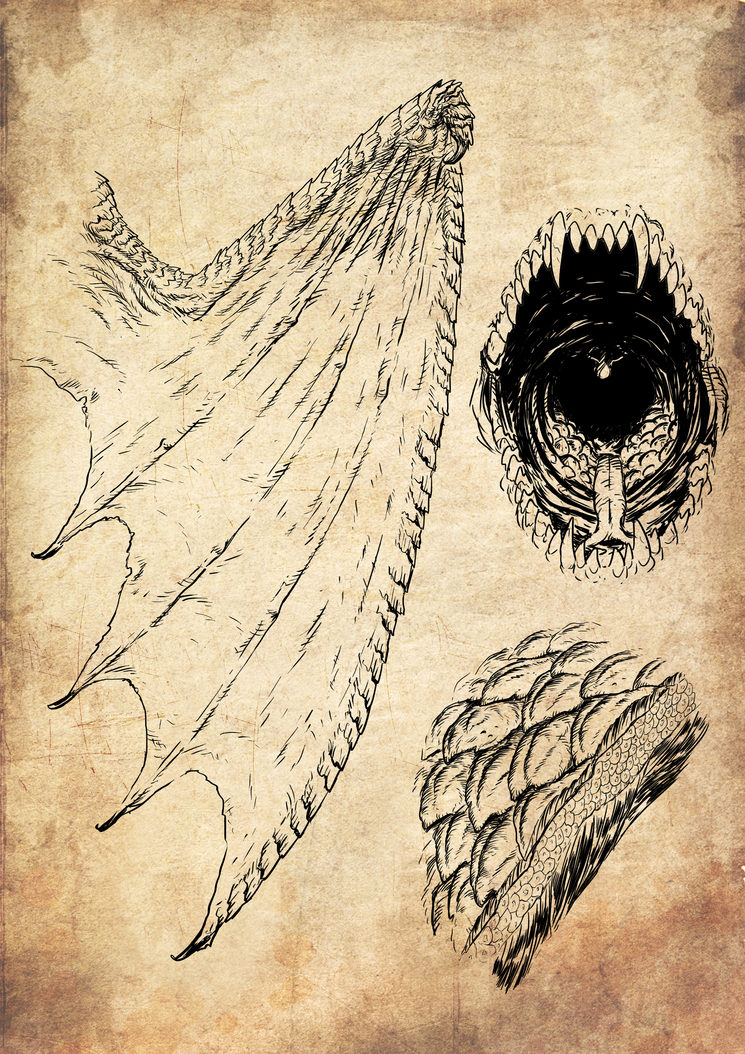 Ala, escamas y glándula de fuego del Lindwurm, ilustrados por Jagoba Leukona