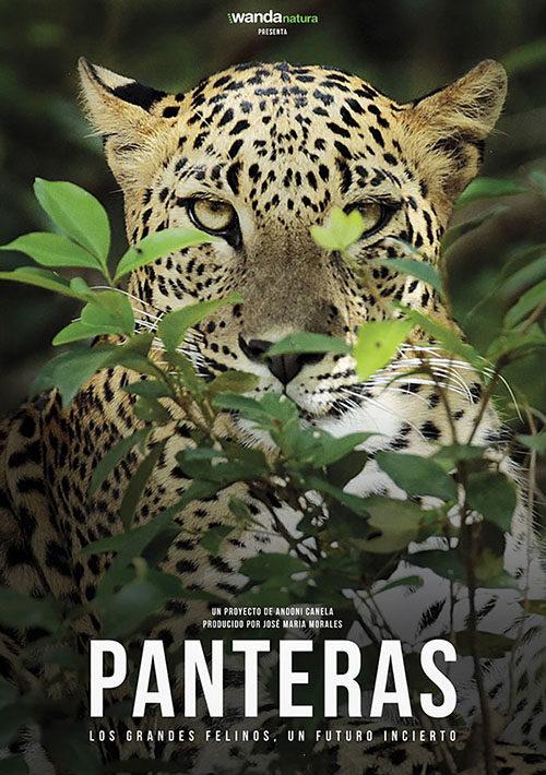 PANTERAS, la película (estreno otoño 2020)