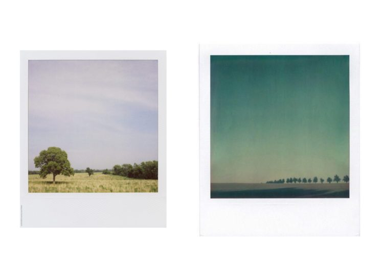 View, polaroid