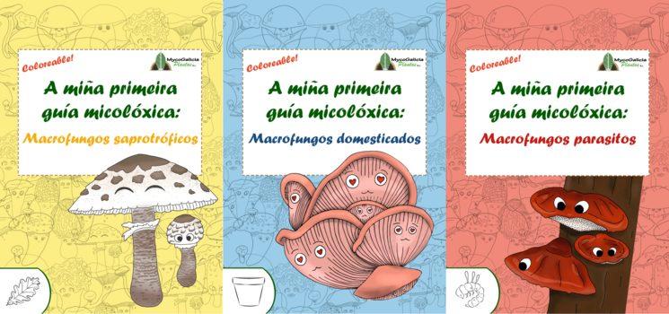 A miña primeira guía micolóxica vai a imprenta...