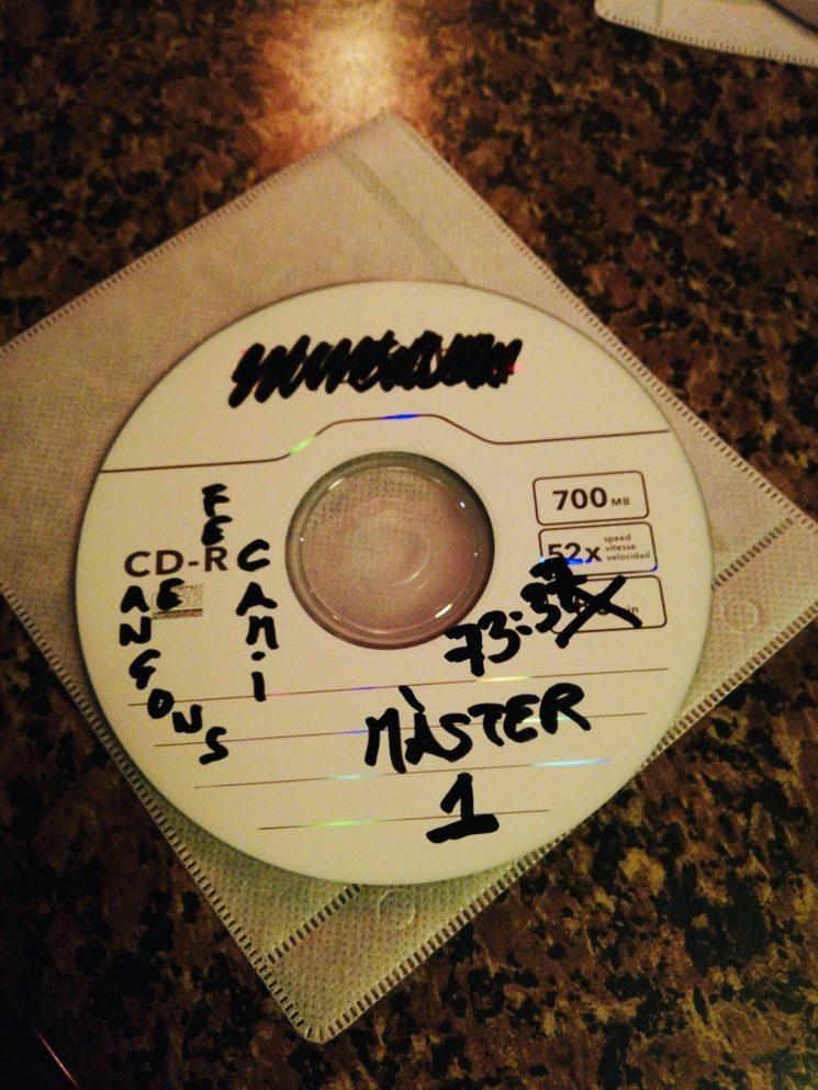 19 cançons, 73:37 minuts de bogeria, tendresa, rània, amor...