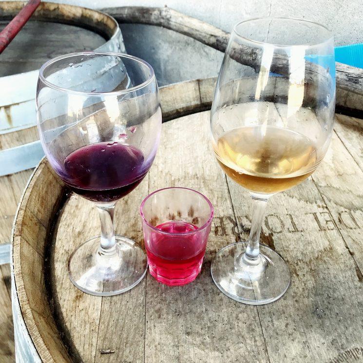 Tinto, blanco y rosado en fermentación