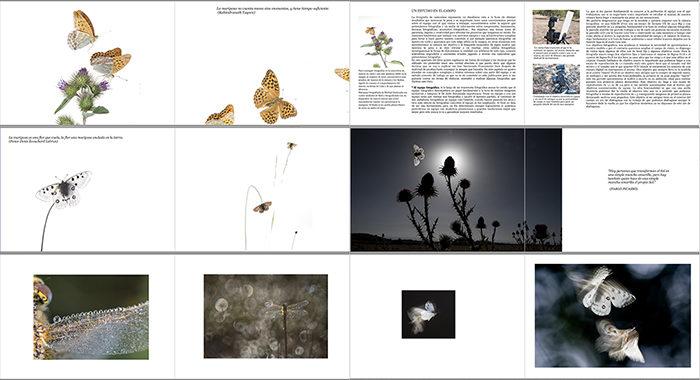 Algunas de las páginas que ilustrarán el libro.