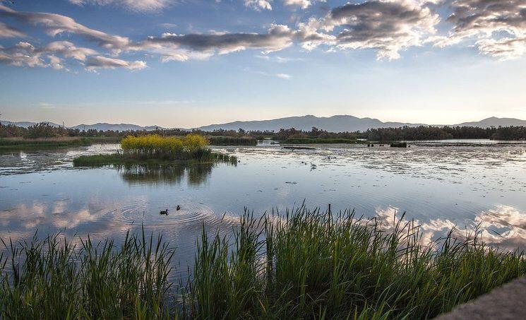 Empordà wetlands. Source: http://redcostabrava.com