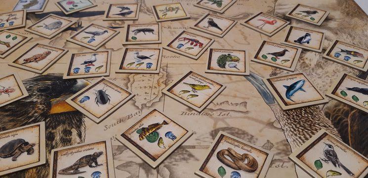 Un detalle de como han quedado las losetas de especies en la versión final