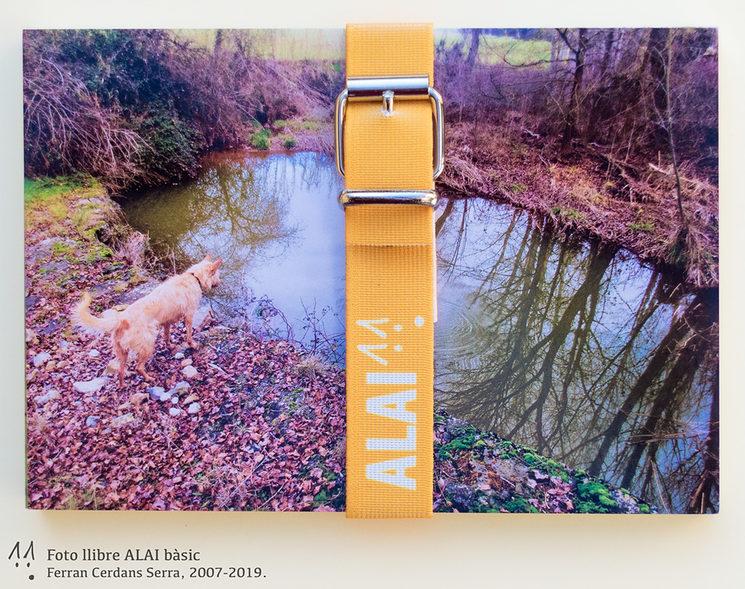 Foto llibre ALAI bàsic, cinta groc taronja