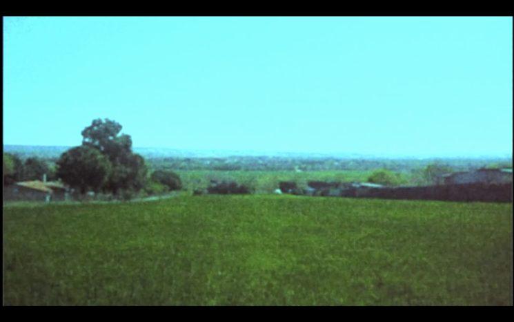 """Captura del cortometraje """"En el Reino de las Imágenes, las Palabras Nacen Muertas"""""""