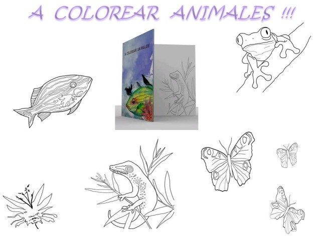 """""""Coloring book of """"Haikus of the animals"""""""""""