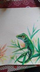 The lizard, scketche