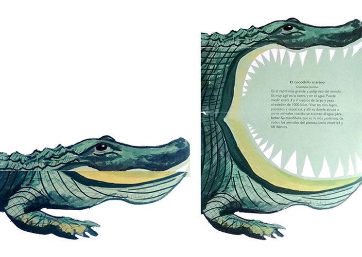 """Imagen desplegable de """"El cocodrilo marino"""""""