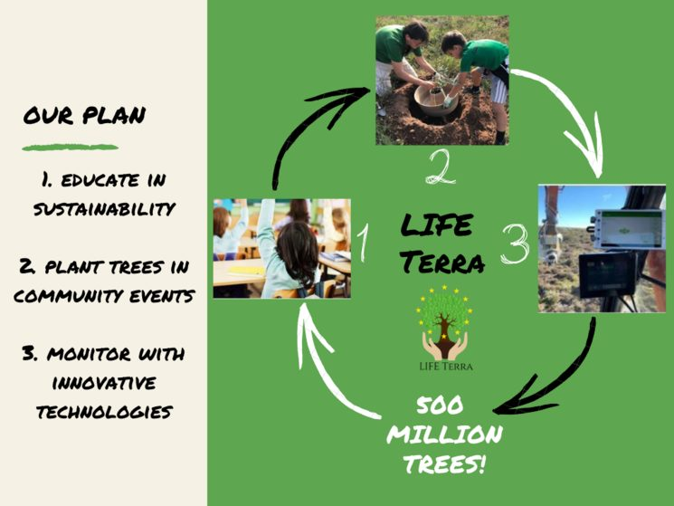 Our action plan