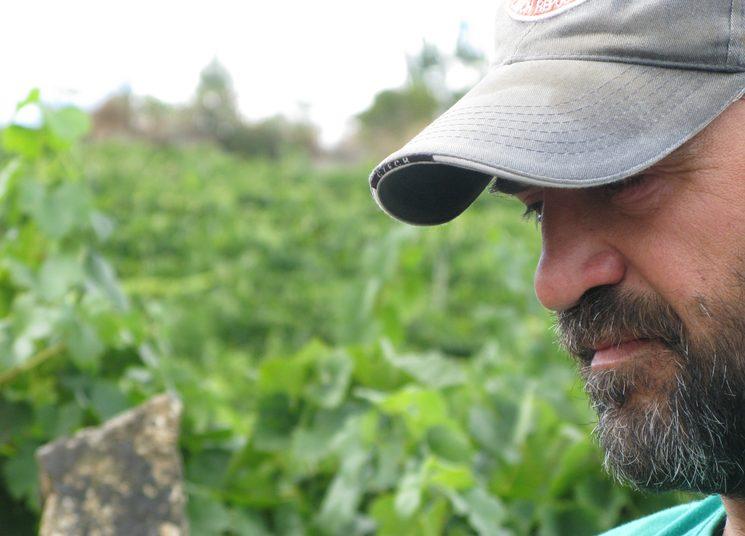 "Javier Monsalve - Viticultor (""Colleiteiro"")"