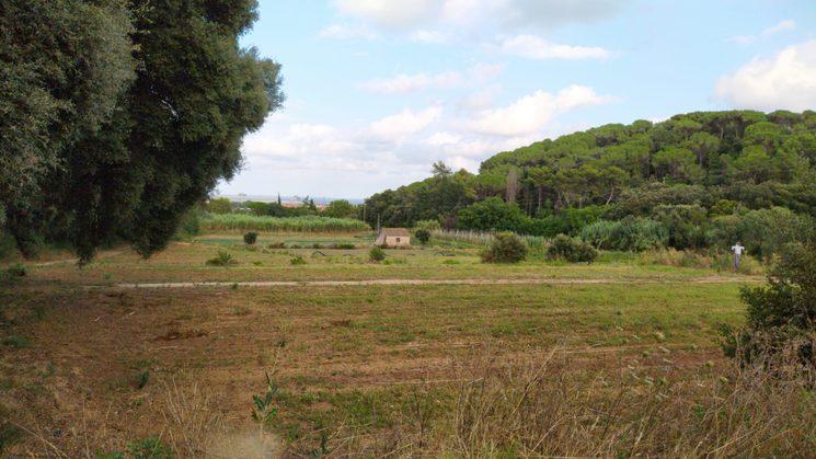 Huerto de Tres Quarteres, en Mataro, Maresme