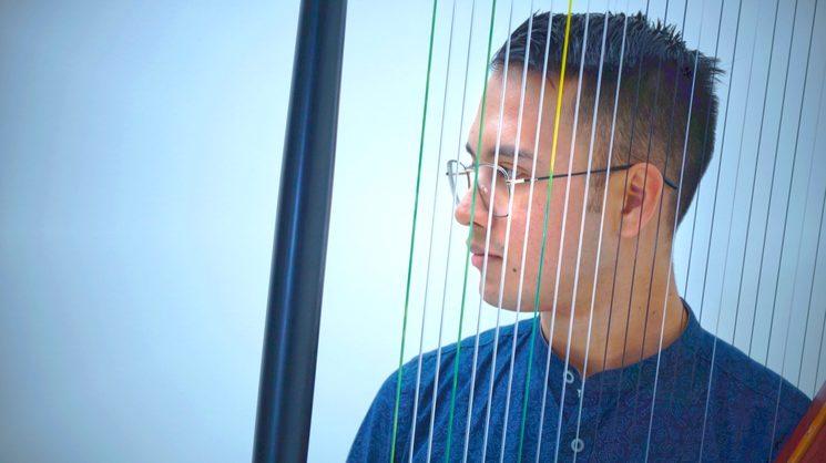 Wuilmer Lopez - llanera harp