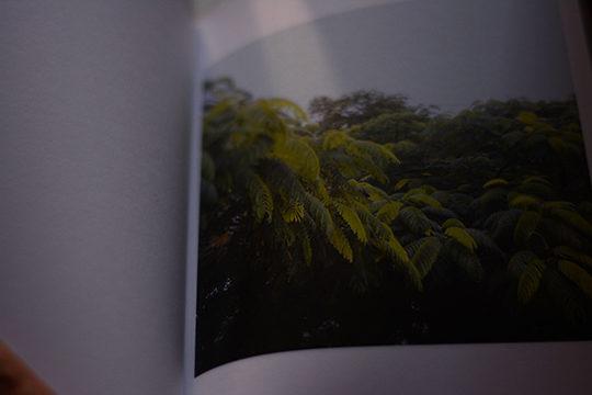 Book inside