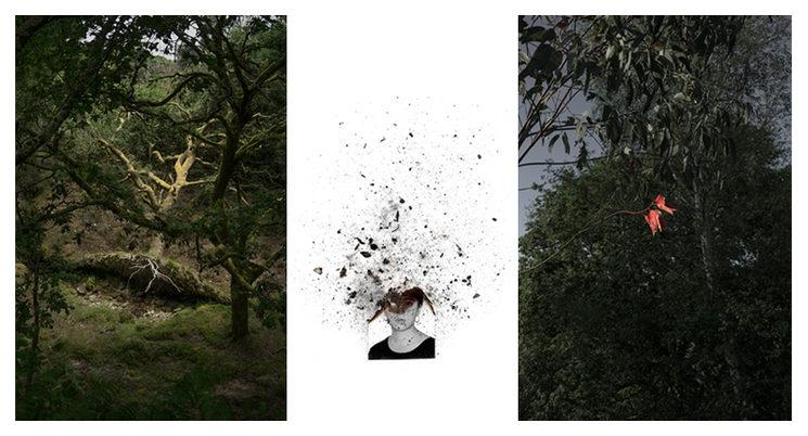 Fotografías disponibles de Ariadna Silva Fernández.