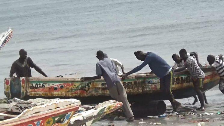 Shooting in Senegal  (2017)