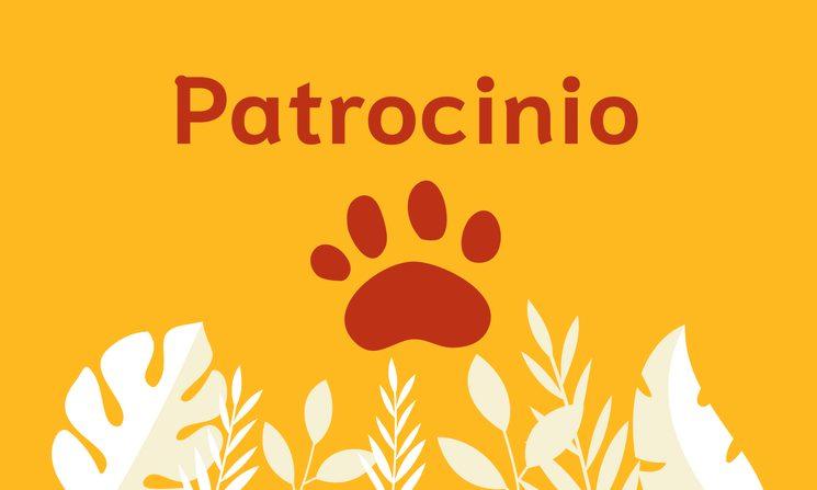Patrocinio: pack salvaje + logo de vuestra empresa en web y redes sociales, y vuestro nombre en la revista impresa.