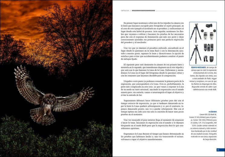 Página tipo del libro