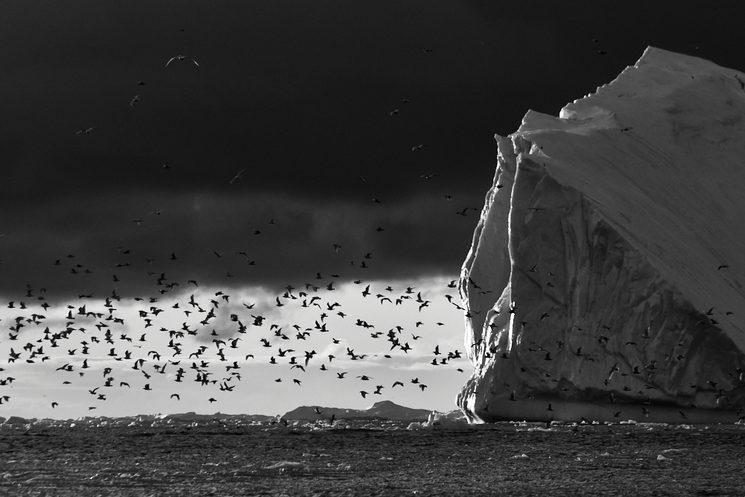 Inmensidad. El Ártico en Invierno, Groenlandia