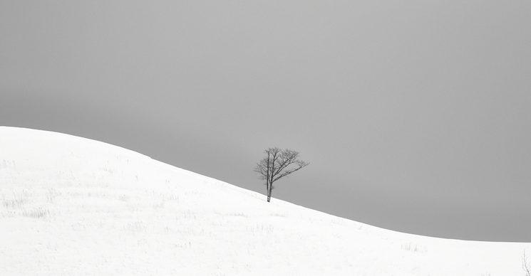 Inmensidad. La búsqueda. Hokkaido, Japón.