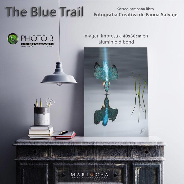 Nuevo sorteo imagen The Blue Trail