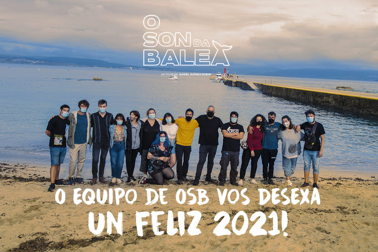 2021: O ano das baleas
