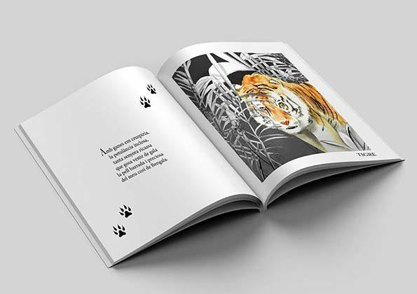 El llibre il·lustrat