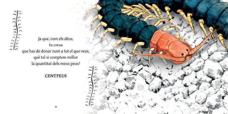 centpeus