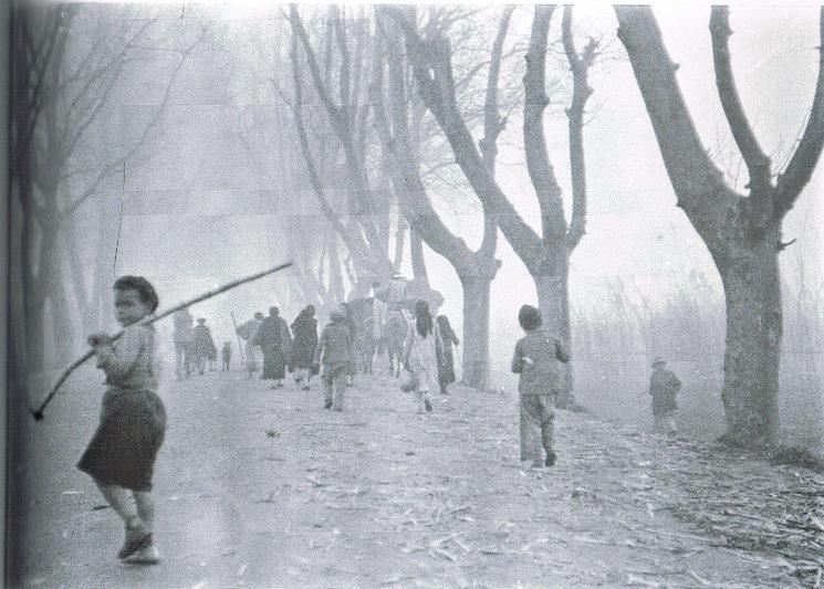 Fotografía realizada por Hazen Sise