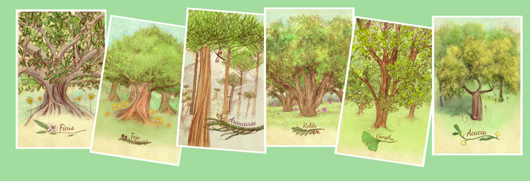 Ficus, Tejo, Araucaria, Roble, Ginko y Acacia