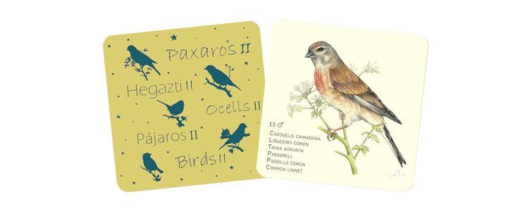 Boceto de ficha para Pájaros II