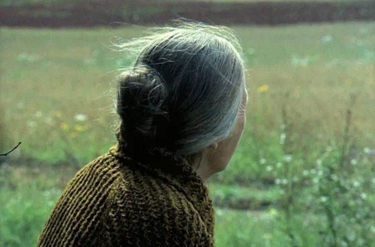 """""""The Mirror"""" (Andrei Tarkovski, 1975)"""