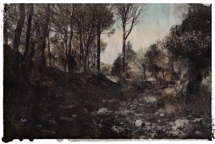 Una reinterpretación contemporánea de las primeras técnicas fotográficas.