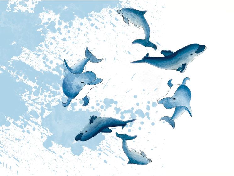 Dolphins swiming at the bottom of the sea