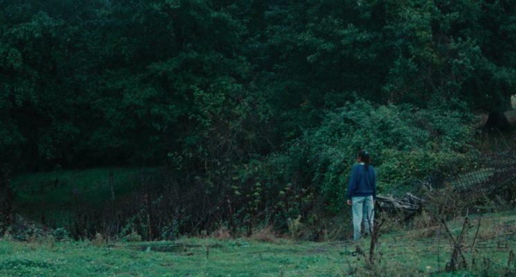 """Le meraviglie (2014), Alice Rohrwacher"""""""