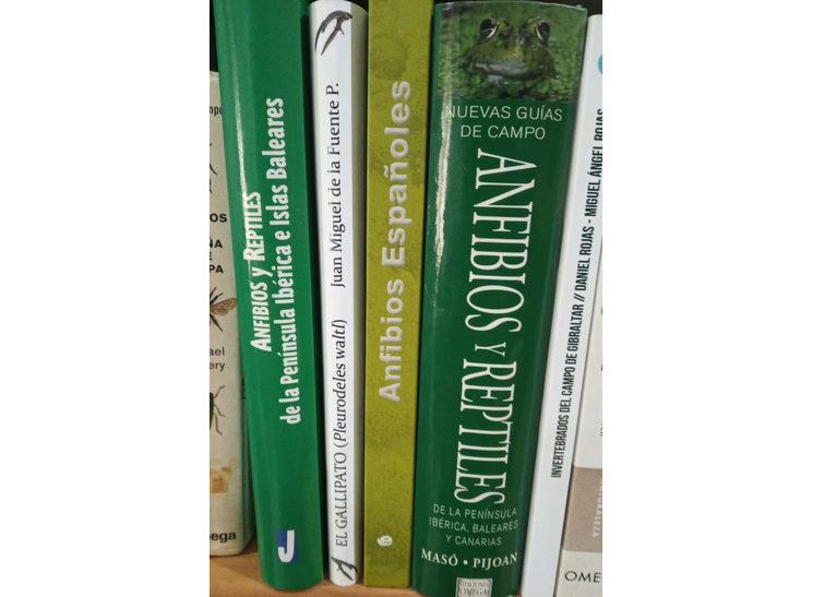 El libro en tu estantería