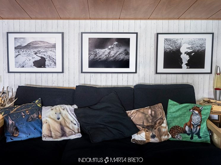 Fotografías con calidad de impresión y papel Fine Art