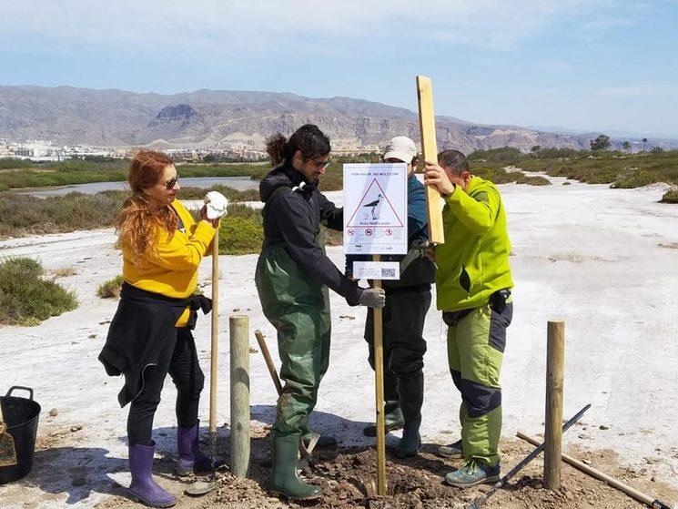 Acciones de Serbal en Almería, delimitando espacios de especial protección para la cría de especies protegidas.