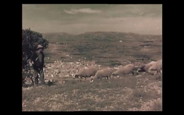 El pastor i la rabera. Benassal. Arxiu José Alcón
