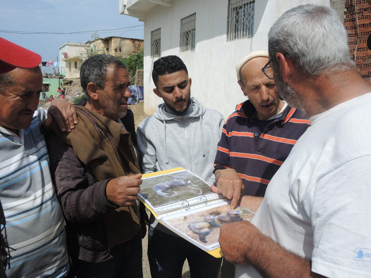 Research and Environmental Education campaign in Morocco by SEBI and in which some members of Faunatura participated.