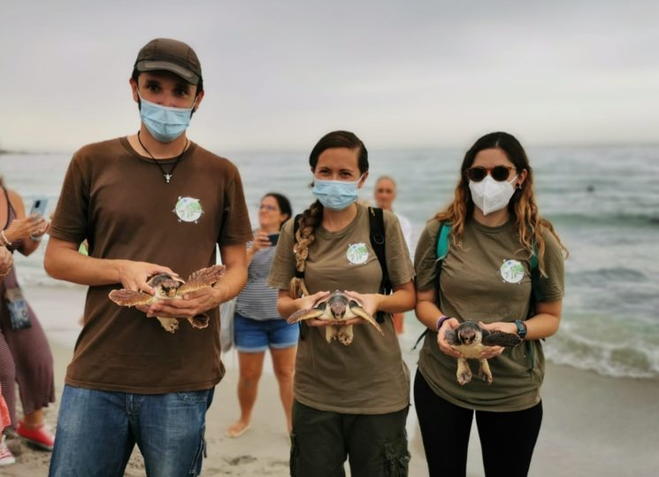 Yes, they carry loggerhead turtles in their hands to free them, but they also wear beautiful T-shirts like the ones you can get.